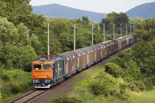 грузоперевозка в крытых вагонах по железной дороге фото